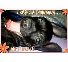 I kissed a Chihuahua Photographic Print