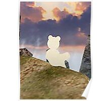 teddy bear watching the sky Poster