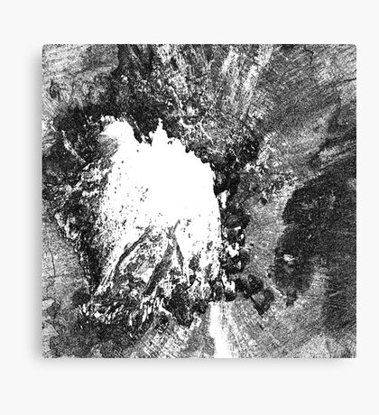 Destruction Canvas Print