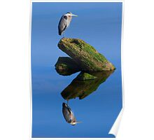 Great Blue Reflection Poster