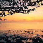 Tangerine Sunset in St. Lucia by Roupen  Baker