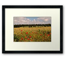 Sheldwich Framed Print