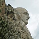 George Washington by RichPicks