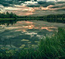 Fire In Water by Matti Ollikainen