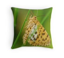 moth in the morning Throw Pillow