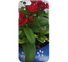 From my little garden iPhone Case/Skin