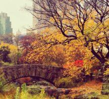 Fall into Central Park Sticker