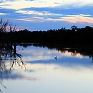 """Twilight on the Murrumbidgee"" by Sue  Fellows"