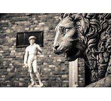 David and the Beast Photographic Print