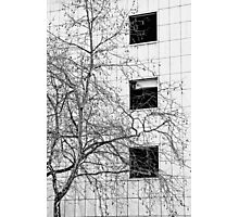 Three Windows Photographic Print