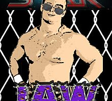 IAW (Insane Asylum Wrestling) GM Promo Pic by MidBrainDesigns