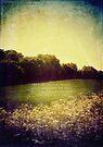 Summer Hills Blues by Sybille Sterk