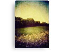 Summer Hills Blues Canvas Print