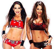 WWE Nikki & Brie Design - Bella Twins by Lee5657