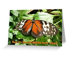 It's Time to Spread Those Wings Greeting Card