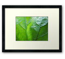 Green Valleys Framed Print