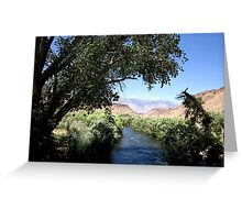 Cool Off By The River Greeting Card