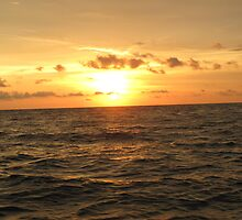 Sunset over Tampa Bay by lilyisabelle