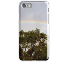 Neighborhood rainbow iPhone Case/Skin