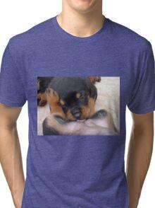 "Puppy Porn ....""The Bitches"" Tri-blend T-Shirt"