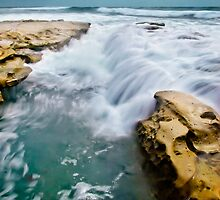 Overrun with Water by jswolfphoto