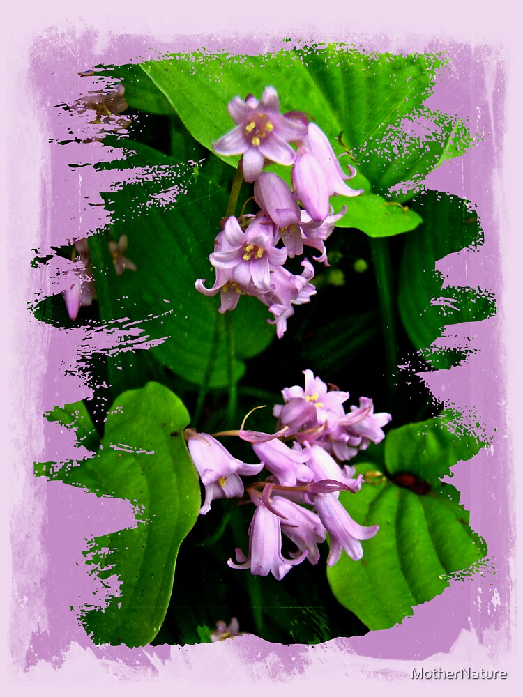 Lily of the Valley - In The Pink #1 by MotherNature
