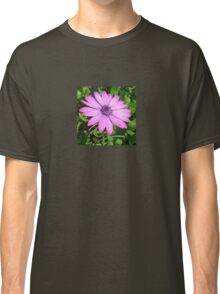 Single Pink African Daisy Against Green Foliage Classic T-Shirt