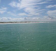 Egmont Key Coastline by JessieT
