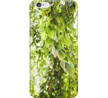 Willow Vert iPhone Case/Skin