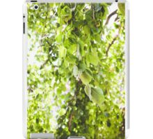 Willow Vert iPad Case/Skin