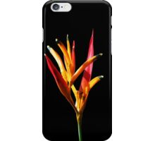 Parakeet Heliconia iPhone Case/Skin