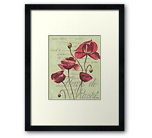 French Pink Poppies 1 Framed Print