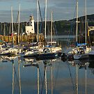 Harbour in evening light by StephenRB