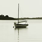 Resting Sloop in Menemsha Pond by Roupen  Baker