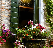 Italian window with shutters and flower box by KSKphotography