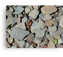 TWO MEDICINE LAKE BEACH PEBBLES - GLACIER NATIONAL PARK Canvas Print