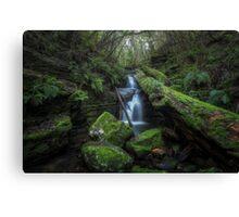 Upper Strickland Falls - Hobart Canvas Print