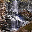 Billy Green Falls by Bill  Watson