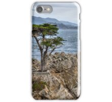 A Cypress Tree iPhone Case/Skin
