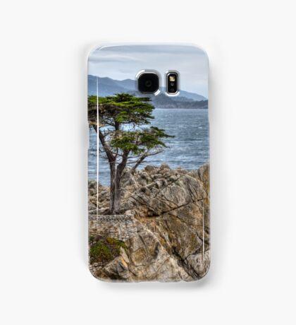 A Cypress Tree Samsung Galaxy Case/Skin