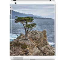 A Cypress Tree iPad Case/Skin