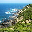 The Coast by dozzam