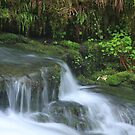 Falls on Winbery Creek by aussiedi