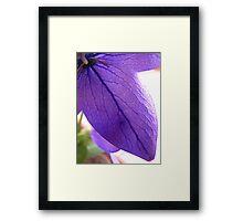 Purple Flower Trois Framed Print