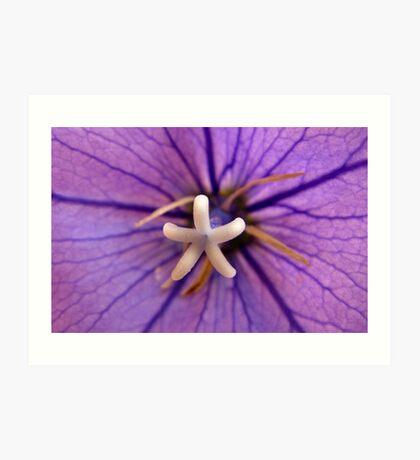 Purple Flower Deux Art Print