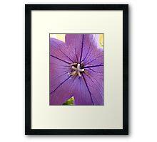 Purple Flower Une Framed Print