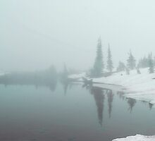 Fogged and Snowed in by Tori Snow