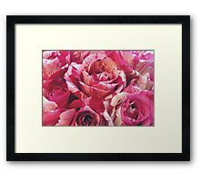 Red and White Roses Deux Framed Print
