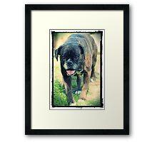"""Coco"" Framed Print"