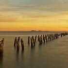 the morning light #2 by ketut suwitra